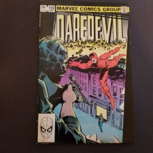 Daredevil-The Man Without Fear