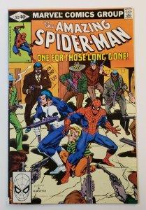 Amazing Spider-Man #202 Marvel Comics 1980 Spider-Man & Punisher VF+