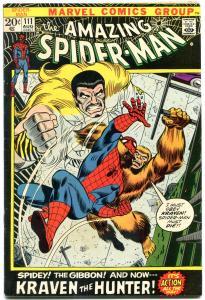 Amazing Spider-Man #111 1972- National Diamonds Sales insert edition FN