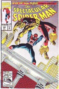 Spider-Man, Peter Parker Spectacular #193 (Jan-93) NM/NM- High-Grade Spider-Man