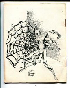 The Spectrum #3 1971-Spectrum-superhero comics-4 X 5-VG/FN