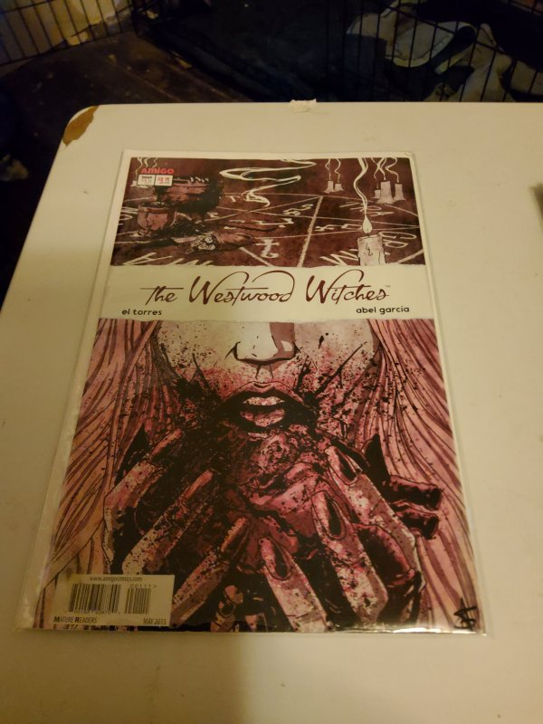 The Westwood Witches (DE) #1 (2013)