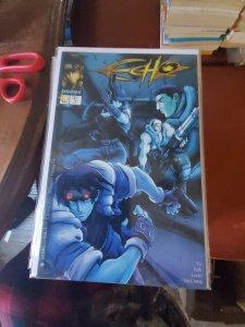 Echo #4 (2000)