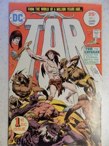 TOR # 1 DC BRONZE JUNGLE ACTION FANTASY KUBERT