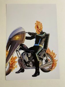 Ghost Rider Marvel Comics poster by Alex Ross