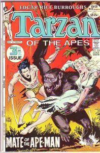Tarzan #209 (Jun-72) FN Mid-Grade Tarzan