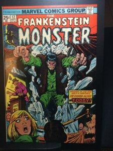 Das Monster von Frankenstein #12 (1974)