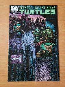 Teenage Mutant Ninja Turtles #47 Cover B ~ NEAR MINT NM ~ 2015 IDW Comics