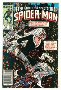 Spectacular Spiderman 90   Spiderman's new black costume
