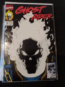 GHOST RIDER #15 GLOW IN THE DARK  COVER VARIANT