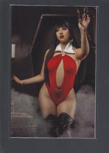 Vampirella: The Dark Powers #4 Incentive Cover