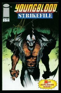 YOUNGBLOOD STRIKEFILE #1 1993 - SIGNED by JAE LEE - IMAGE COMICS - HIGH GRADE