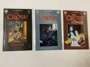 Crow Flesh and Blood set #1-3 8.0 VF (1996 Kitchen Sink)
