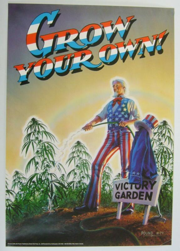 Grow Your Own vintage poster - john pound - uncle sam dope/marijuana underground