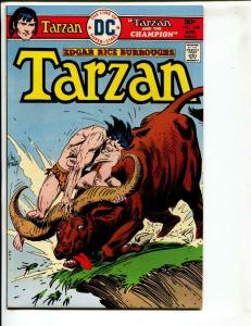 Tarzan-#248-1976-DC-BRONZE-AGE-Joe Kubert-NM-