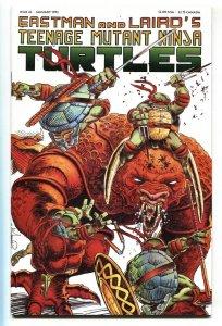 TEENAGE MUTANT NINJA TURTLES #43 comic book 1992 NM-