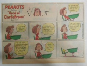 (52) Peanuts Sunday Pages by Charles Schulz from 1977 Size: ~11 x 14 inches