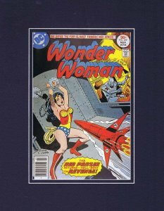Wonder Woman #229 DC Framed 11x14 Repro Cover Display Red Panzer