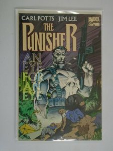 Punisher An Eye for an Eye TPB SC 6.0 FN (1996 Reprint)
