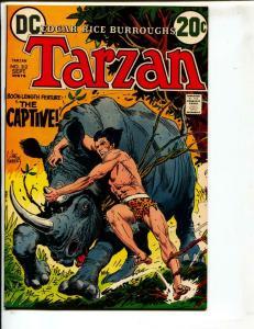Tarzan-#212-1972-DC-BRONZE-AGE-Joe Kubert-NM-