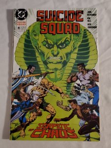 Suicide Squad 45 Near Mint Cover art by Geof Isherwood