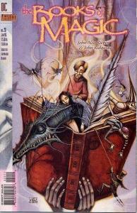 Books of Magic (1994 series) #20, NM (Stock photo)