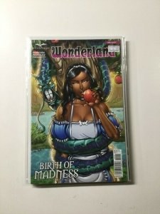Wonderland Birth of Madness One-Shot Near Mint Zenscope HPA