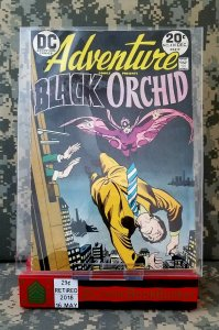 Adventure Comics #430 VF Black Orchid Vintage DC Old Bronze Age Tony DeZuniga