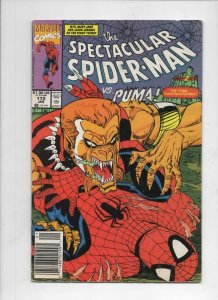 Peter Parker SPECTACULAR SPIDER-MAN #171 172 173 VF 1976 1990 1991, 3 issues