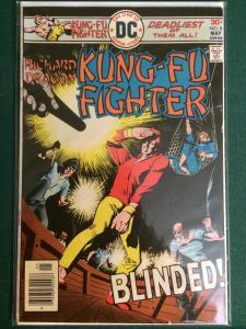 Richard Dragon Kung Fu Fighter #8