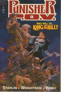 PUNISHER P. O. V. #3, NM, Jim Starlin, Bernie Wrightson, Bill Wray, 1991