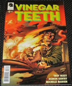 Vinegar Teeth #3 (2018)