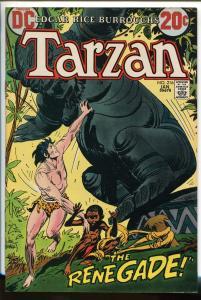 TARZAN #2156 1973-DC-EDGAR RICE BURROUGHS-JOE KUBERT JUNGLE ART-vf