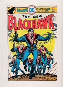 DC Comics BLACKHAWK #244 (1975) ~ FINE (PF211)