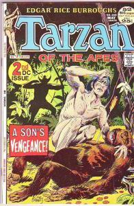 Tarzan #208 (May-72) FN Mid-Grade Tarzan
