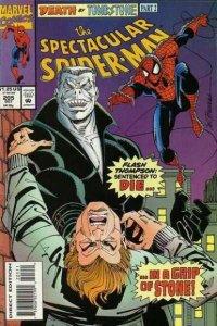 Spectacular Spider-Man (1976 series) #205, NM- (Stock photo)