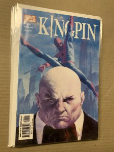 Complete Kingpin 2003 Limited Series Marvel Comics