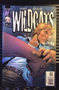 Wildcats #20 (2001)