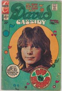 David Cassidy #13