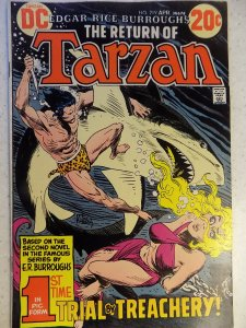 TARZAN OF THE APES # 219 DC KUBERT