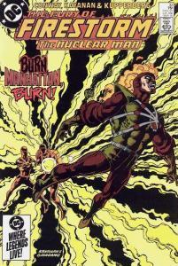 Fury of Firestorm (1982 series) #33, NM- (Stock photo)