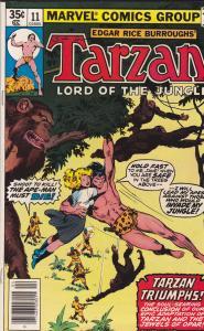 Tarzan #11
