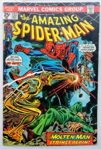 The Amazing Spider-Man #132 (FN/VF)(1974)
