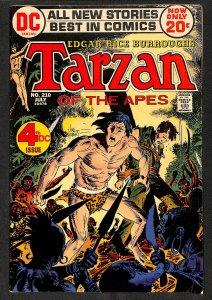 Tarzan #210 (1972)