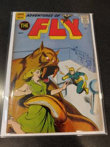 ADVENTURES OF THE FLY #13 GOLDEN AGE CLASSIC