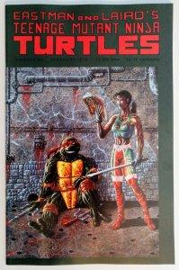 Teenage Mutant Ninja Turtles #44 (Vol. 1)