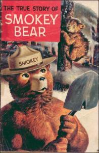 Gold Key THE TRUE STORY OF SMOKEY THE BEAR #1 VG+ 1969 Edition