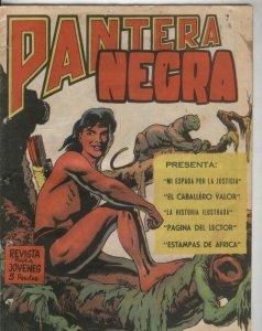 Pantera Negra revista