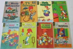 Walter Lantz & Woody Woodpecker comic lot 31 different