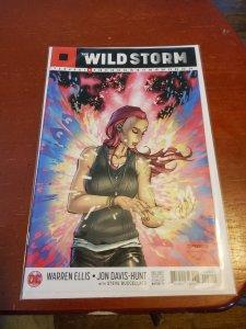 Wild Storm #8
